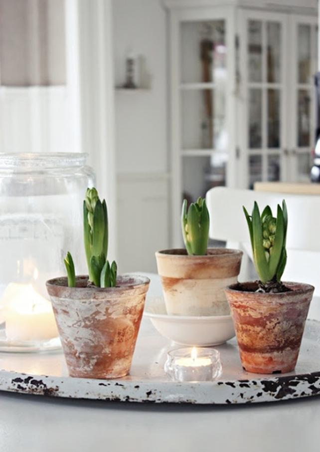 millas-hem-blogspot-christmas-inspiration-decoration-plants-white