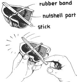 nut-instrument