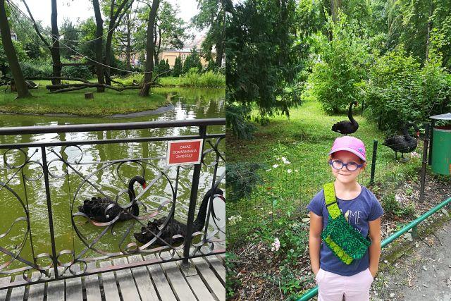 zdjęcia zoo babcia Krysia itp_Monika lipiec 201711_do postu_SMALL